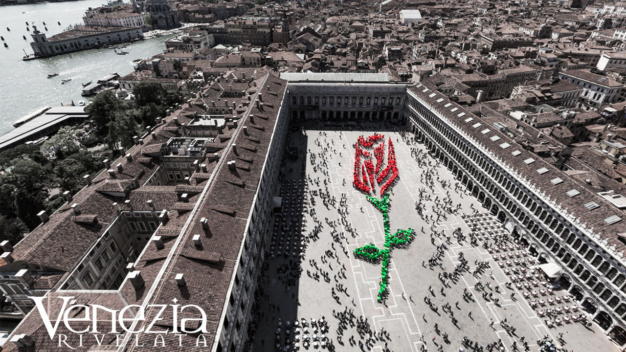 Una rosa per Venezia